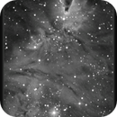 NGC 2264, Christmas Tree Cluster/Cone Nebula, Hα False Color Animation, 11 Feb 2015,                                David Dearden