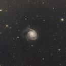 M101,                                John R Carter, Sr.
