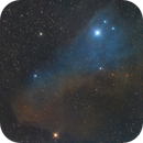 The Blue Horsehead Nebula,                                Adriano