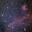 IC2177 Seagull Nebula,                                bobfang