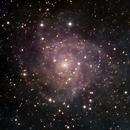 IC 342 the Hidden Galaxy from Urban Site,                                jerryyyyy