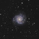M74 The Phantom Galaxy,                                Morris Yoder