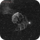 ic443 Jellyfish Nebula,                                Bernard DELATTRE