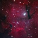Gum 15 from Telescope Live,                                Mauricio Christiano de Souza
