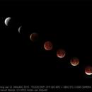 Moon Eclipse Jan 2019,                                Andre van Zegveld