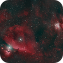Flame, HorseHead & Orion Nebula - DSLR 135mm HOO,                                Euripides