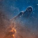IC1396 IC 1396 Elephant's Trunk,                                Chen Wu