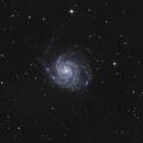 Galassia Girandola - Pinwheel Galaxy,                                Maurizio Berti