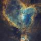 IC 1805 • Sh2-190 • Heart Nebula in SHO,                                Douglas J Struble