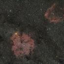 IC 1396 - Sh2-129,                                remidone
