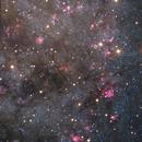 M31N 2008-12a, What an incredivel recurrent Nova (a rare or unique image),                                Ruben Barbosa