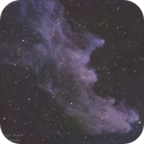 IC 2118 - Witch Head Nebula,                                Kyle Pickett