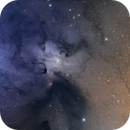 IC 4603,                                Mark