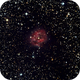 IC5146,                                Daniele Viarani