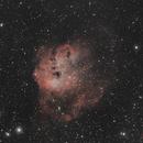 IC410 Bi -color,                                John Massey