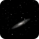 NGC253 Galaxy,                                alfista