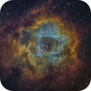 The Rosette Nebula,                                APshooter