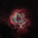 Rosette Nebula (Narrowband),                                Dzmitry Kananovich
