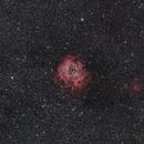 Rosette Nebula - 135 mm Widefield DSLR,                                JanD