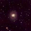 M77,                                David Redwine