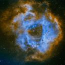 Rosette Nebula,                                John Smart