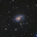 NGC 772 Galaxy,                                Toshiya Arai