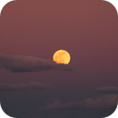 Full Moon 12/29/2020,                                Jim Matzger