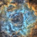 NGC2237 en SHO crop,                                Georges