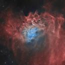IC 405 - Flaming Star Nebula - Bicolor,                                Martin Junius