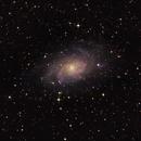 M33 – The Triangulum Galaxy,                                Vlad Gherman