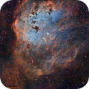 IC 410 The Tadpoles in modified SHO,                                Greg Nelson