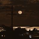Bad Moon Rising,                                astropical
