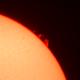 Sun in H-Alpha. Solar prominence 29.06.2020,                                Sergei Sankov