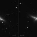 SN 2014J  in M82,                                Giorgio Baj