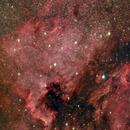North American & Pelican Nebulae,                                Mike Wiles