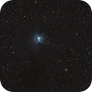 Iris Nebula,                                Tom KoradoxTom