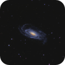 NGC 5033,                                Tim
