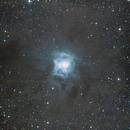 NGC 7023 - Iris nebula,                                Thorsten - DJ6ET
