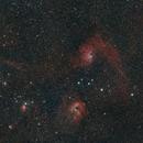 IC 405 Flaming Star Nebula & IC 410 Tadpole Nebula,                                ThomasR