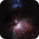 First M42 with QHY183C,                                Gianluca Galloni