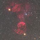 Jellyfish Nebula,                                KojiTajima