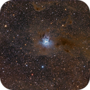 NGC7023 Iris Nebula-wide field,                                Jerry Macon