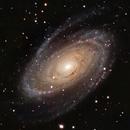 Bode's Galaxy (Messier 81),                                Henning Schmidt