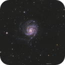 M101 - The Pinwheel Galaxy,                                Henrique Silva