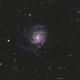 M101 - The Pinwheel Galaxy,                                Henrique Silva