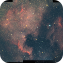 NGC7000-IC5070 NorthAmerica Pelican Mosaic,                                Seldom