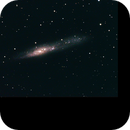 NGC 55,                                DavidLJ