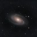 M81,                                Tom KoradoxTom