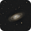 M64, the black eye galaxy,                                Andre van Zegveld