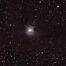Iris Nebula NGC7023,                                matthew.maclean
